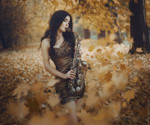 music, beautiful, and photography image
