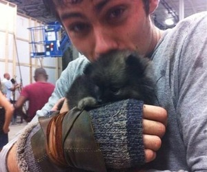 dylan o'brien, maze runner, and puppy image