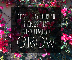 flowers, quotes, and grow image