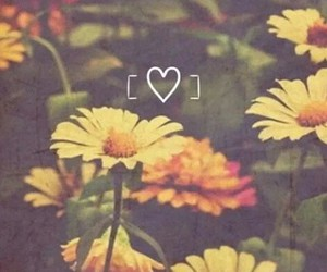 flowers, vintage, and yellow image