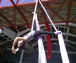 aerial silk and aerial silks image