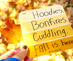 fall, bonfires, and autumn image