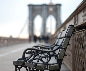 photography, bench, and bridge image