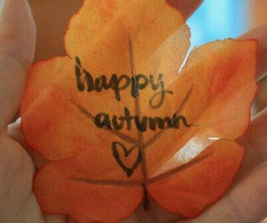 autumn, weather, and love image