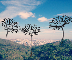 city, flower, and grunge image