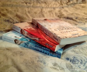 books, my loves, and kiera cass image