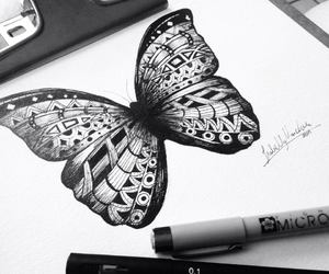 butterfly and drawing image