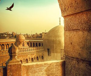 mosque and egypt image