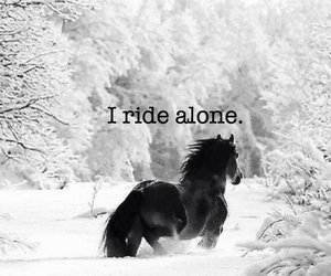 alone, horse, and life image