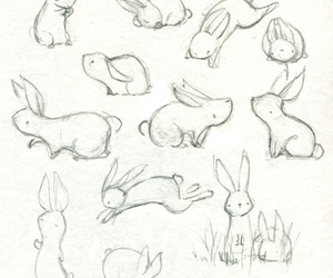 pencil, rabbit, and sketches image
