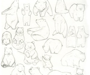 bear, sketches, and pencil image