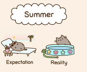 cat, summer, and pusheen image