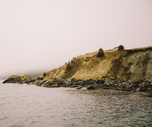 cove, newfoundland, and photography image