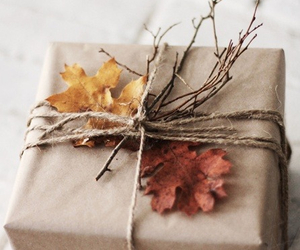 gift, autumn, and present image