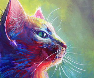 cat, colourful, and painting image