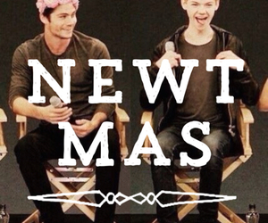 newtmas and the maze runner image