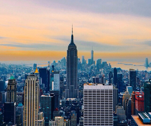 indie, nature, and newyork image