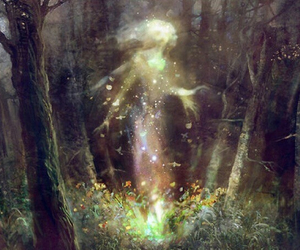 forest, magic, and fairy image