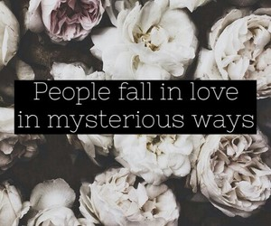 love, ed sheeran, and flowers image