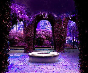 purple, flowers, and magic image