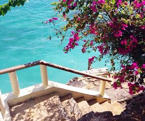 flowers, beach, and luxury image