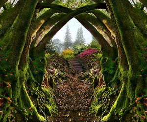 fairytale, nature, and romantic image