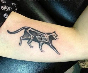 tattoo, cat, and cat tattoo image