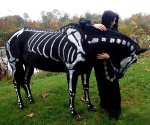 horse, Halloween, and black image