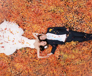 autumn, bride, and colorful image