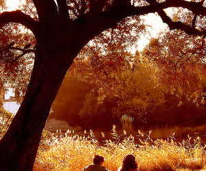 autumn, love, and couple image