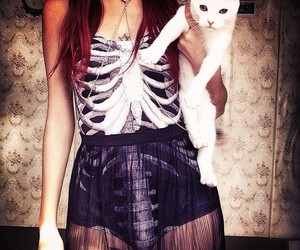cat, skeleton, and beautiful image