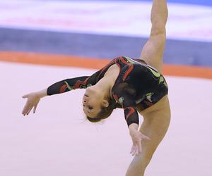 gymnastics and vanessa ferrari image