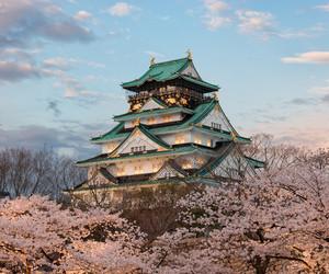 japan, sakura, and sky image