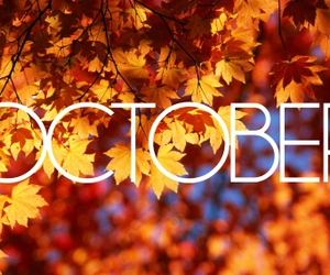 october, fall, and autumn image