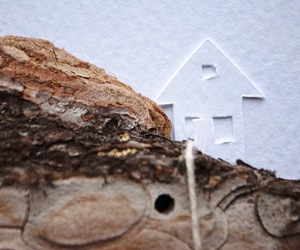 bark, house, and Paper image