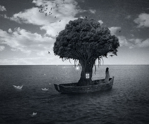 tree and boat image