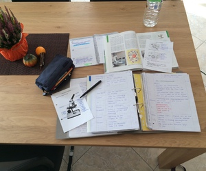 college, school, and study hard image