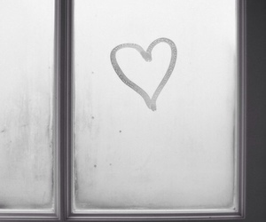 heart, love, and window image