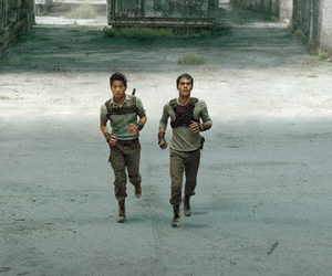 thomas, Minho, and the maze runner image