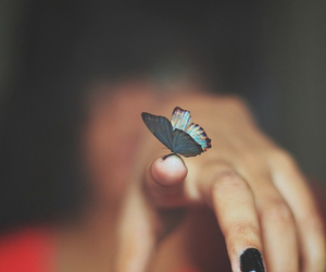 butterfly, hand, and blue image