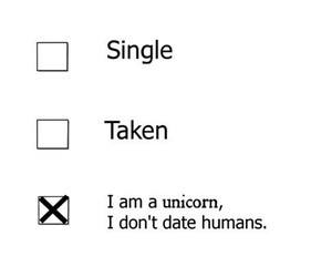 unicorn, single, and funny image