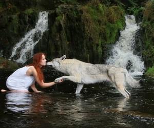 wolf, girl, and beautiful image