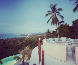 luxury, summer, and palms image