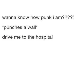 funny, punk, and tumblr image