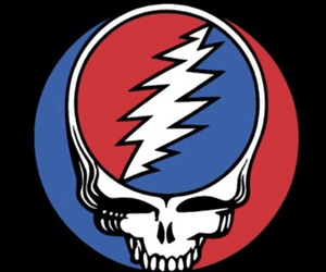 grateful dead and steal your face image