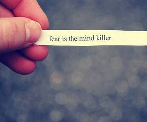 fear, quote, and life image