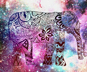 galaxy, animal, and elephant image