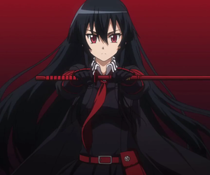 akame, anime, and girl image