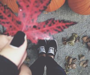 black, leaves, and vans image