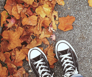 allstar, cold, and autum image